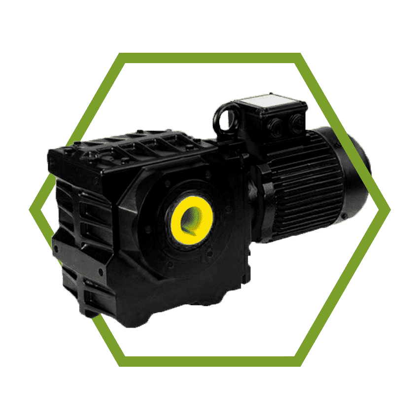 Submersible Worm Geared Motor BS Series
